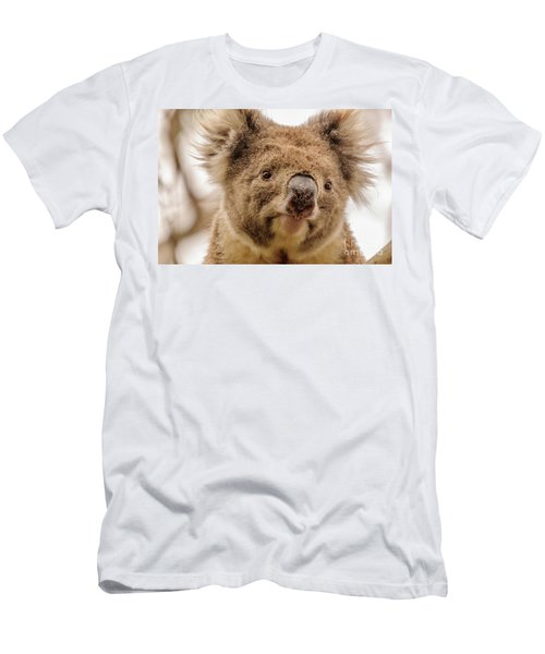 Koala 4 Men's T-Shirt (Slim Fit) by Werner Padarin