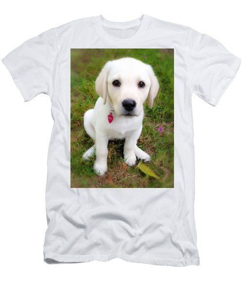 Lab Puppy Men's T-Shirt (Slim Fit) by Stephen Anderson