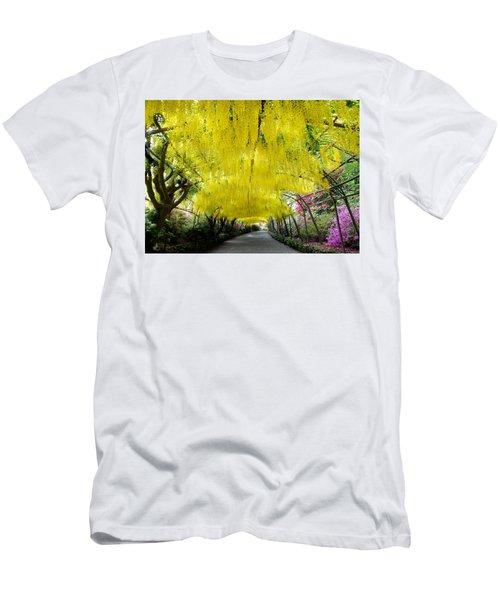 Laburnum Arch, Bodnant Garden Men's T-Shirt (Athletic Fit)