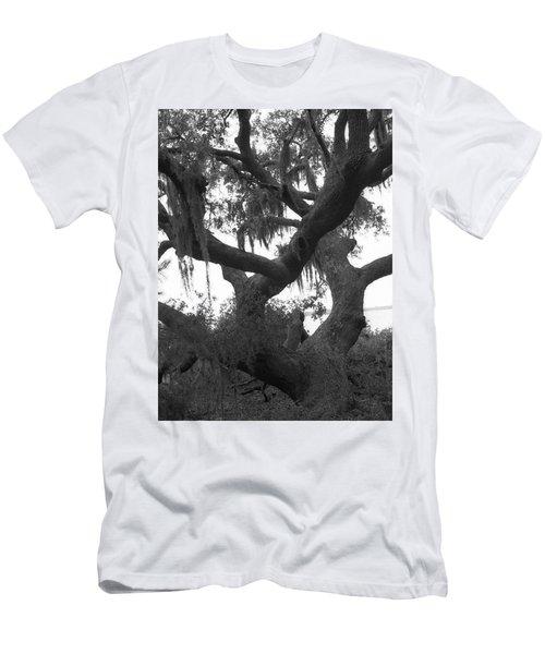 Lands End Talking Tree Men's T-Shirt (Athletic Fit)