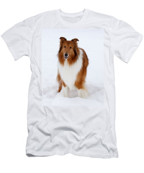Lassie Enjoying The Snow Men's T-Shirt (Athletic Fit)