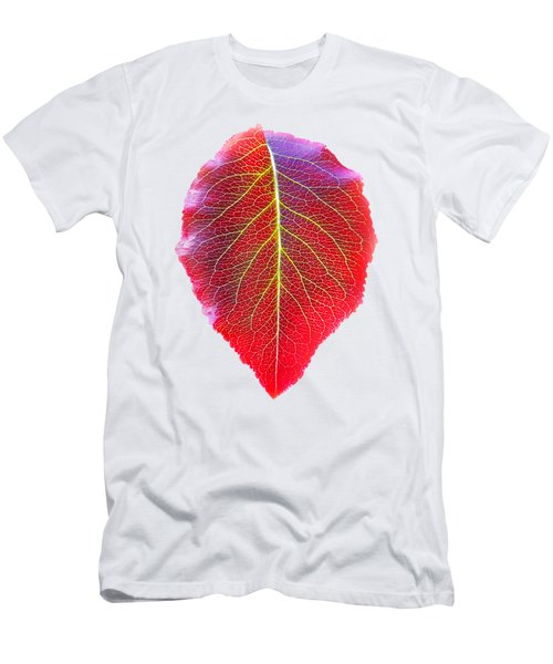 Leaf Of Autumn Men's T-Shirt (Athletic Fit)