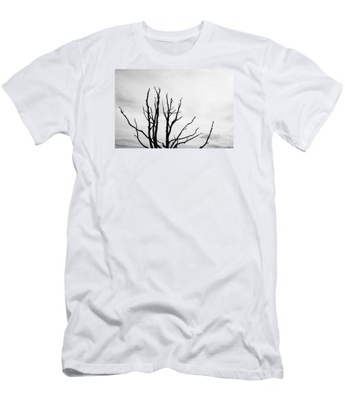 Leafless Tree Men's T-Shirt (Athletic Fit)