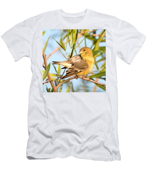Men's T-Shirt (Athletic Fit) featuring the photograph Lesser Goldfinch by Dan McManus