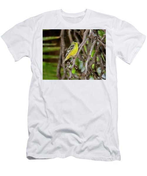 Men's T-Shirt (Athletic Fit) featuring the photograph Lesser Goldfinch H57 by Mark Myhaver