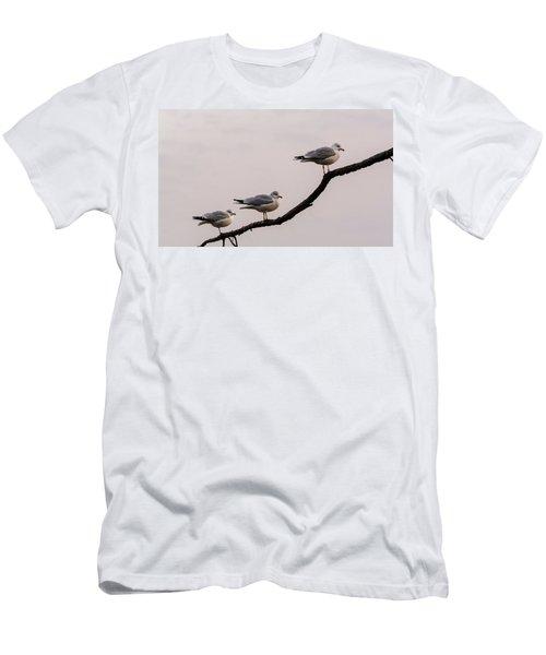 Line-up Men's T-Shirt (Athletic Fit)