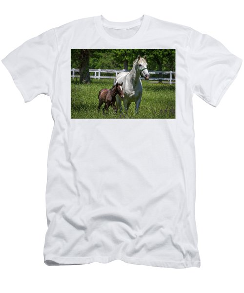 Lipizzan Horses Men's T-Shirt (Athletic Fit)