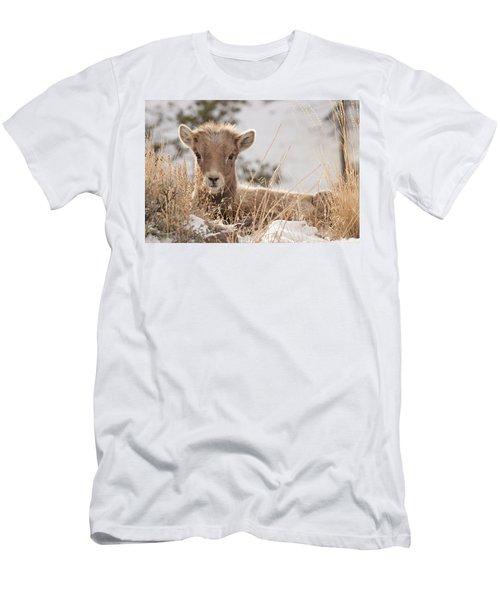 Little Bighorn Men's T-Shirt (Athletic Fit)