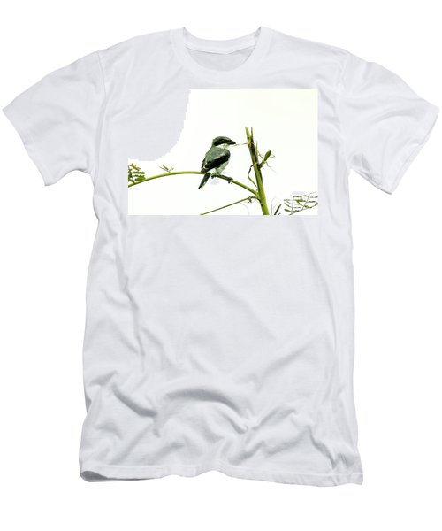 Loggerhead Shrike And Mantis Men's T-Shirt (Slim Fit) by Robert Frederick