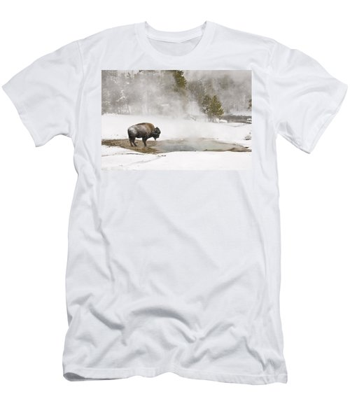 Bison Keeping Warm Men's T-Shirt (Athletic Fit)