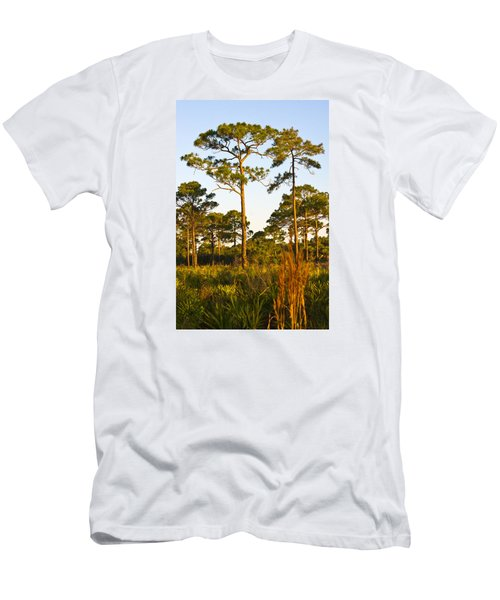 Longleaf Pines, Sunrise, Myakka State Forest Men's T-Shirt (Athletic Fit)