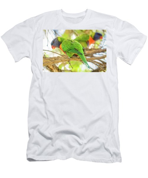 Lorrikeets 02 Men's T-Shirt (Athletic Fit)