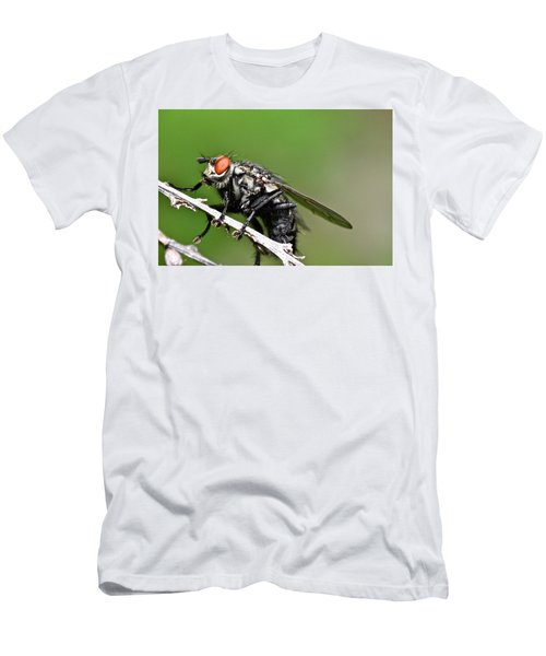 Macro Fly Men's T-Shirt (Athletic Fit)