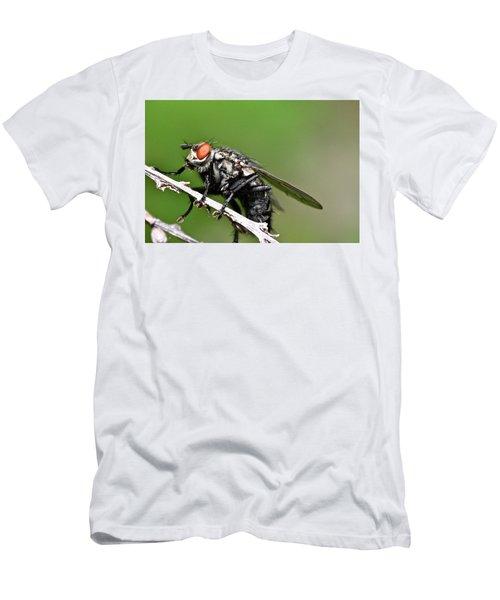 Macro Fly Men's T-Shirt (Athletic Fit)