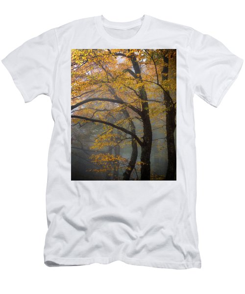 Magical Forest Blue Ridge Parkway Men's T-Shirt (Athletic Fit)