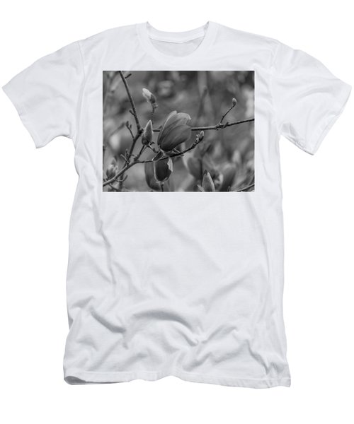 Magnolia Bw Blooms Buds Branches Men's T-Shirt (Athletic Fit)