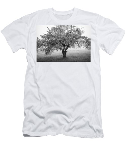 Men's T-Shirt (Slim Fit) featuring the photograph Maine Apple Tree In Fog by Ranjay Mitra