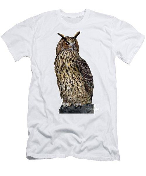 Majestic Eurasian Northern Eagle Owl Bubo Bubo - Hibou Grand-duc - Buho Real - Nationalpark Eifel Men's T-Shirt (Athletic Fit)