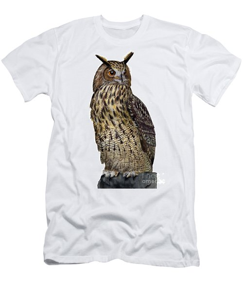 Majestic Eurasian Northern Eagle Owl Bubo Bubo - Hibou Grand-duc - Buho Real - Nationalpark Eifel Men's T-Shirt (Athletic Fit)
