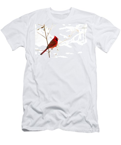 Male Cardinal Posing In The Snow Men's T-Shirt (Athletic Fit)