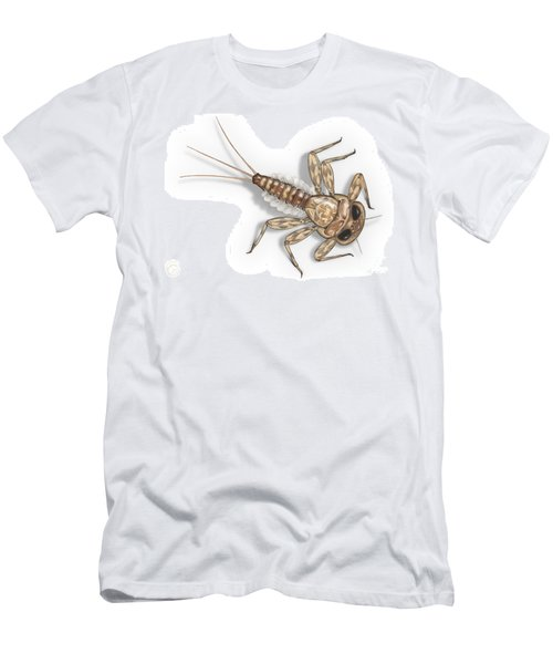 Mayfly Larva Nymph Rithorgena Ecdyonurus Venosus - Moscas De May Men's T-Shirt (Athletic Fit)