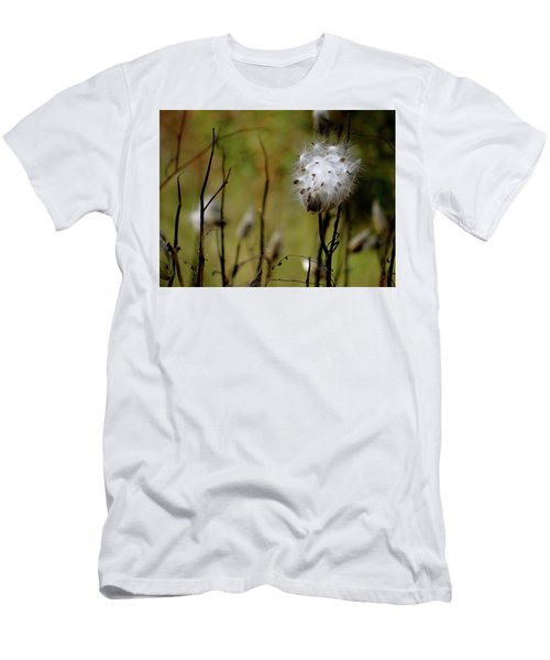 Milkweed In A Field Men's T-Shirt (Athletic Fit)