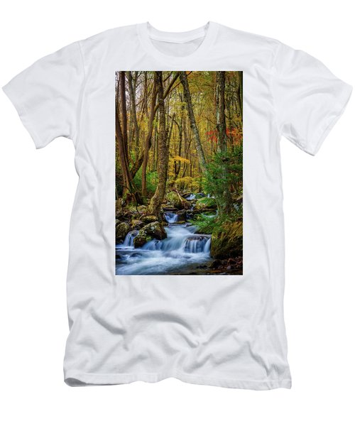 Mill Creek In Fall #1 Men's T-Shirt (Athletic Fit)