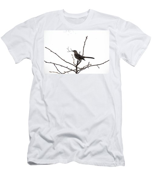 Mockingbird With Twig Men's T-Shirt (Athletic Fit)