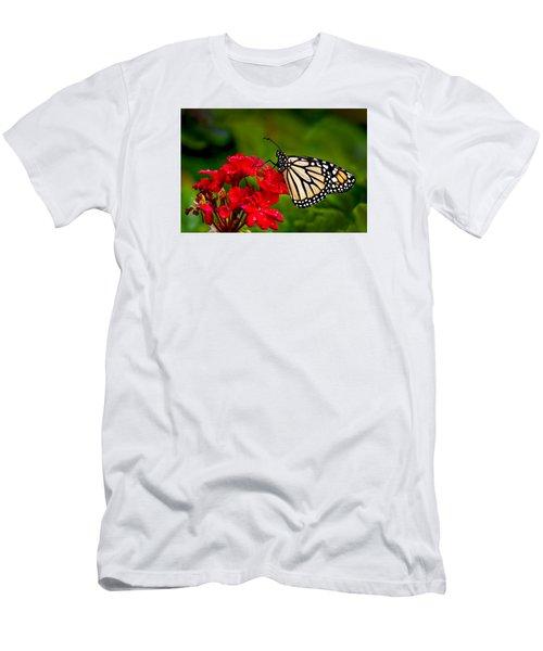 Monarh Butterfly Men's T-Shirt (Athletic Fit)