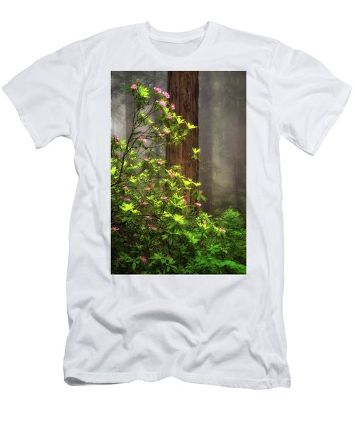 Moody Forest  Men's T-Shirt (Athletic Fit)