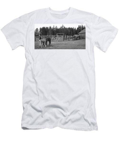 Mountain Corrals Men's T-Shirt (Athletic Fit)