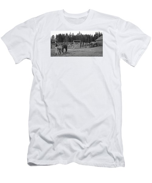 Mountain Corrals Men's T-Shirt (Athletic Fit)