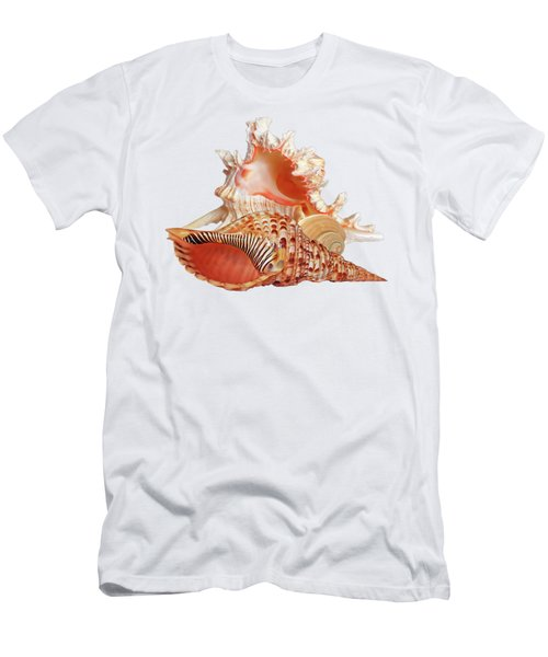 Natural Shell Collection On White Men's T-Shirt (Athletic Fit)
