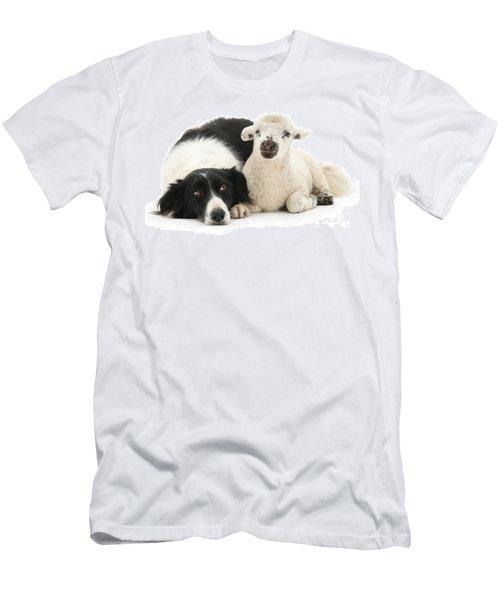 No Sheep Jokes, Please Men's T-Shirt (Athletic Fit)