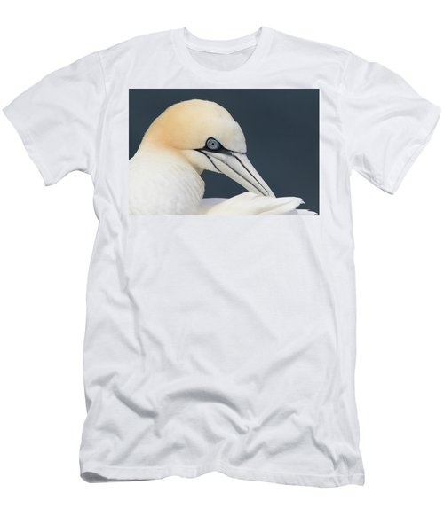 Northern Gannet At Troup Head - Scotland Men's T-Shirt (Athletic Fit)