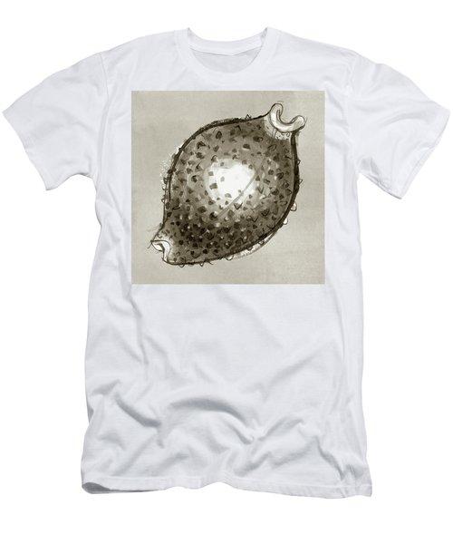 Nut Cowrie Men's T-Shirt (Athletic Fit)