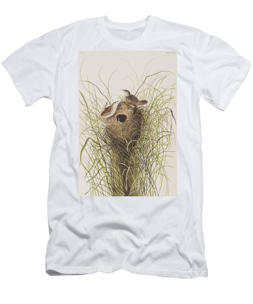 Nuttall's Lesser-marsh Wren  Men's T-Shirt (Athletic Fit)