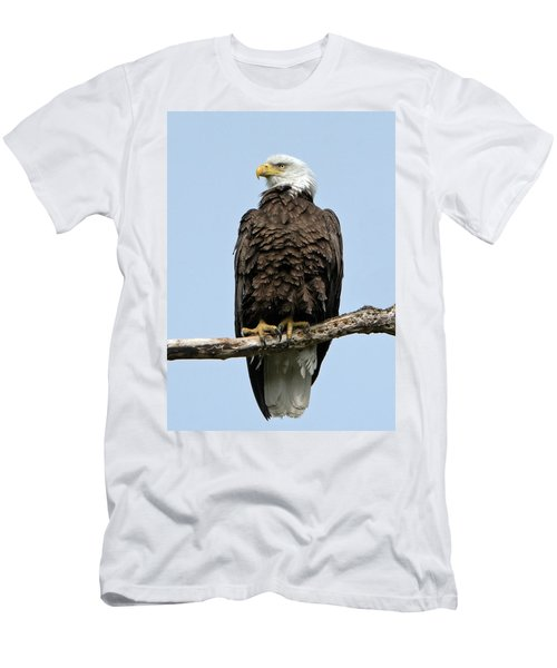 Observant Sentry Men's T-Shirt (Athletic Fit)