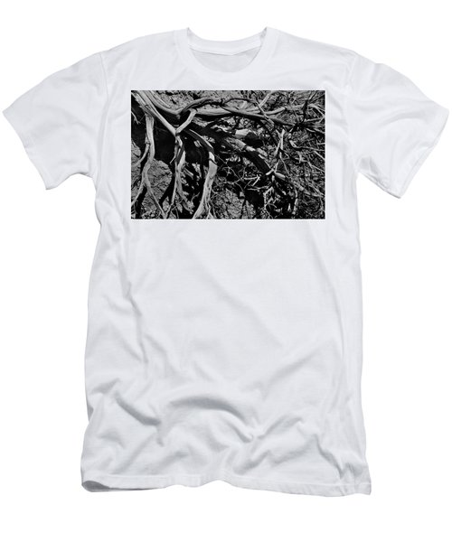 Old Sagebrush Men's T-Shirt (Athletic Fit)