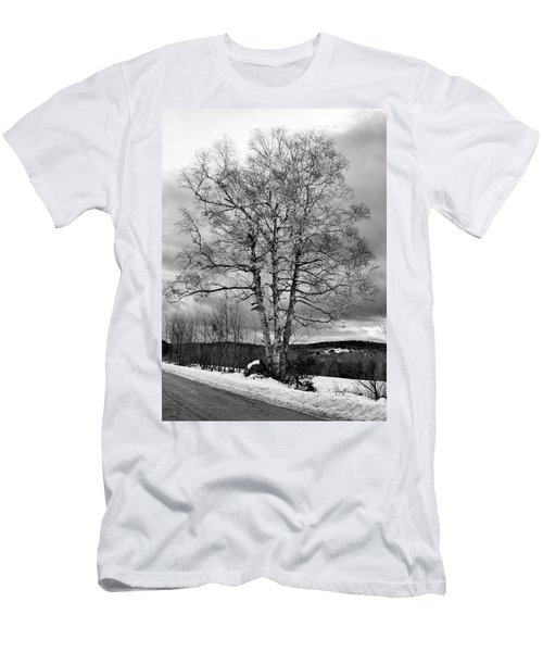 Old White Birch Men's T-Shirt (Slim Fit) by Betty Pauwels