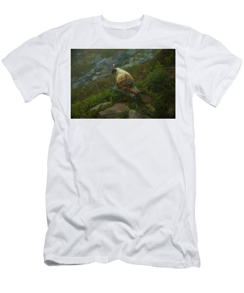 On Lookout Men's T-Shirt (Athletic Fit)