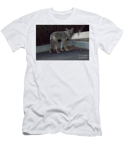 On The Prowl 1 Men's T-Shirt (Slim Fit) by Anne Rodkin