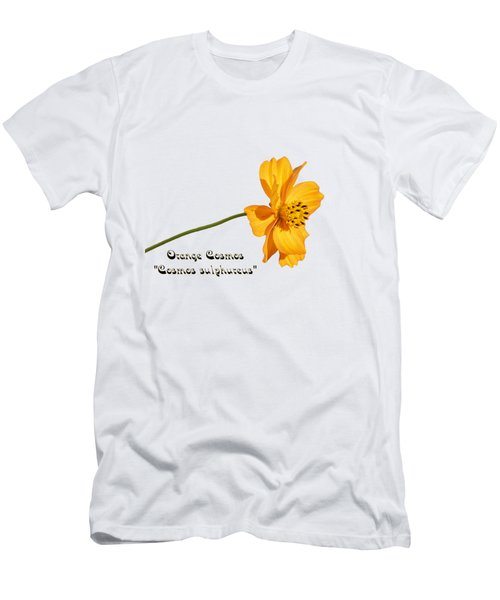 Orange Cosmos Isolated 2018-1 Men's T-Shirt (Athletic Fit)