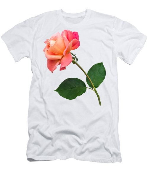 Orange Rose Specimen Men's T-Shirt (Slim Fit) by Jane McIlroy
