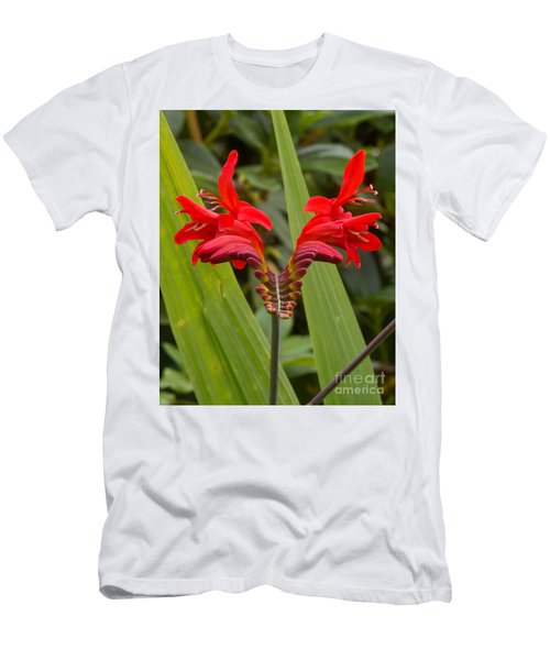 Oregon Flower 1 Men's T-Shirt (Athletic Fit)