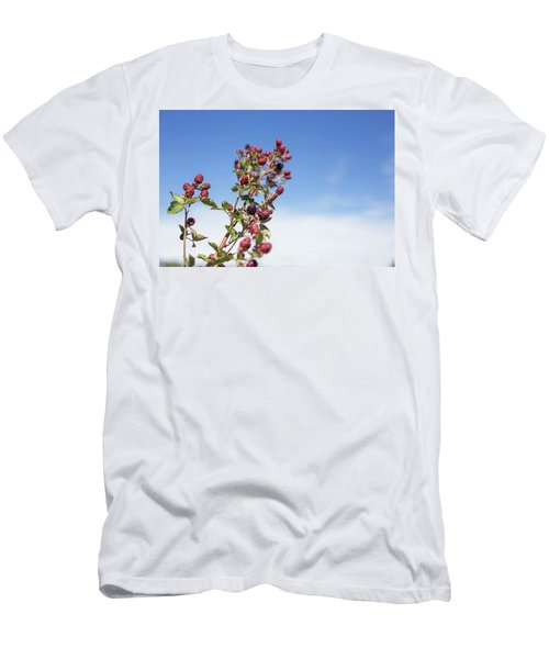 Organic Handpicked Home Orchard Raspberries,blackberries From Bu Men's T-Shirt (Athletic Fit)