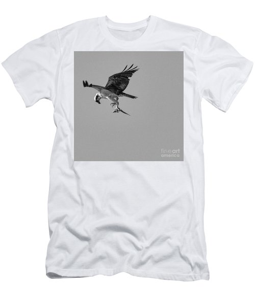Osprey With Prey Men's T-Shirt (Athletic Fit)