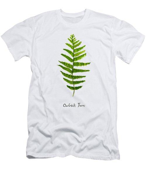 Ostrich Fern Men's T-Shirt (Slim Fit) by Color Color
