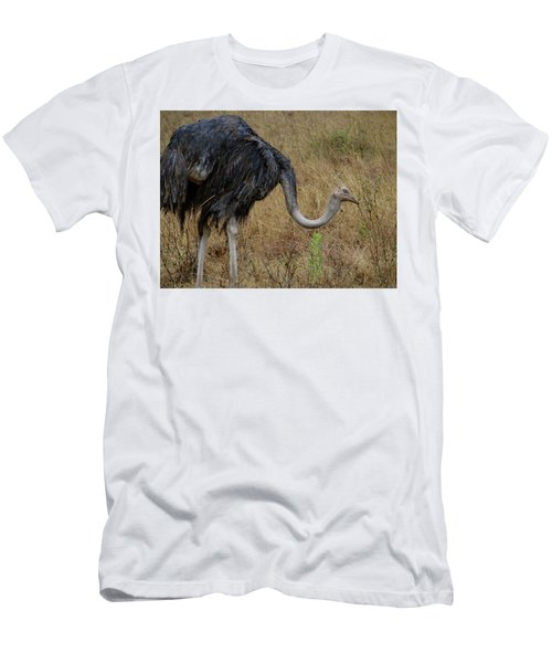Ostrich In The Grass 2 Men's T-Shirt (Athletic Fit)