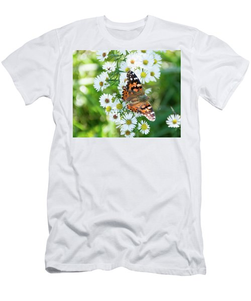 Painted Lady Butterfly Men's T-Shirt (Athletic Fit)